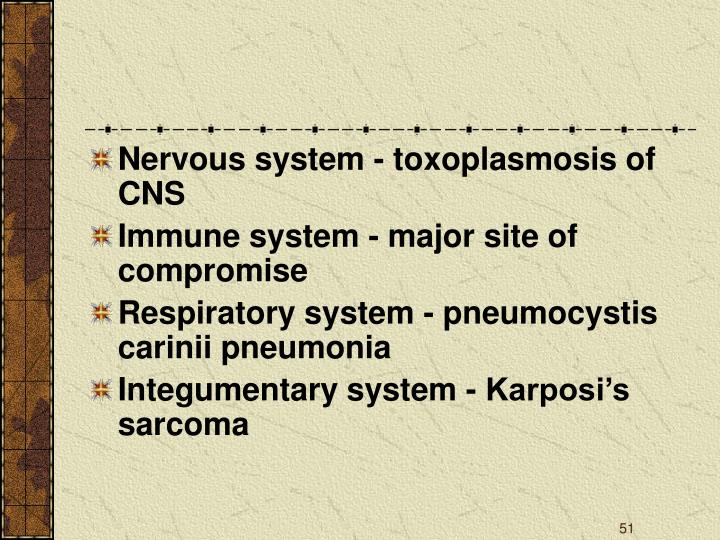 Nervous system - toxoplasmosis of CNS