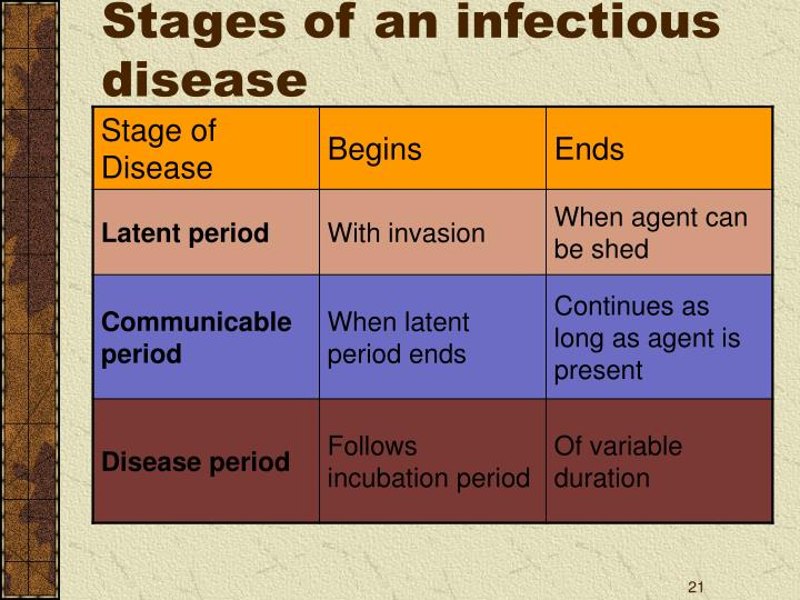 Stages of an infectious disease
