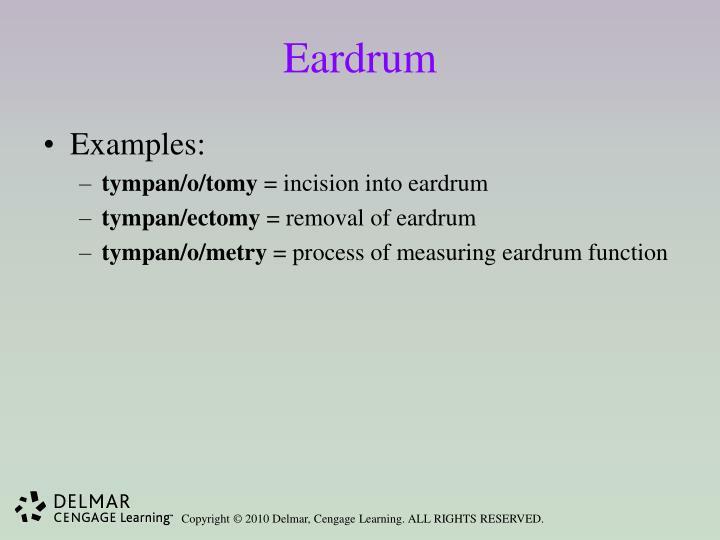 Eardrum