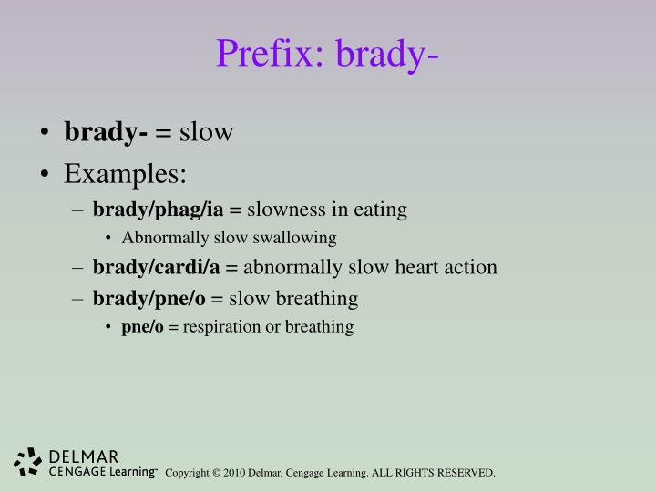 Prefix: brady-