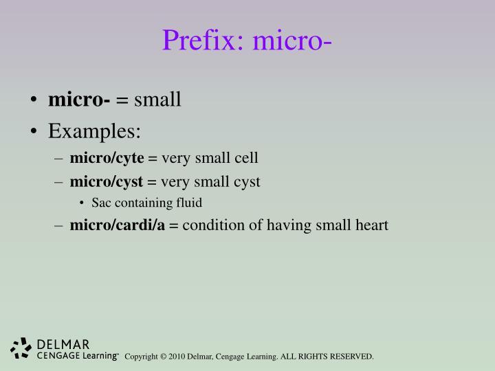 Prefix: micro-
