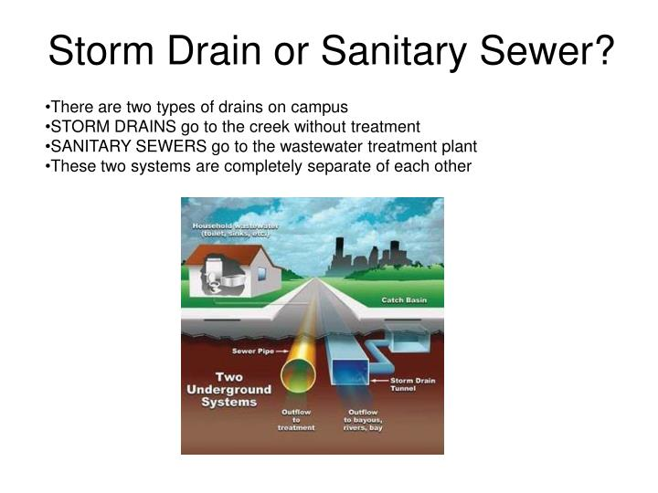 Storm Drain or Sanitary Sewer?