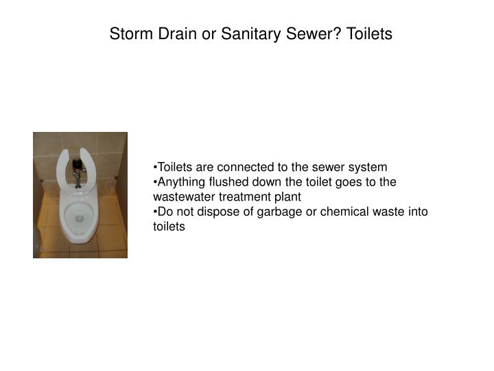 Storm Drain or Sanitary Sewer? Toilets