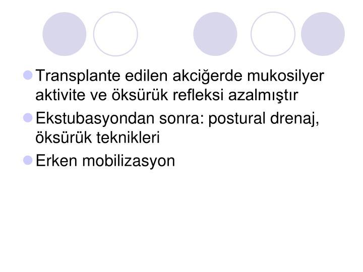 Transplante edilen akciğerde mukosilyer aktivite ve öksürük refleksi azalmıştır