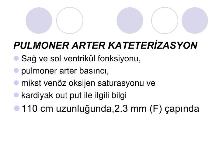PULMONER ARTER KATETERİZASYON