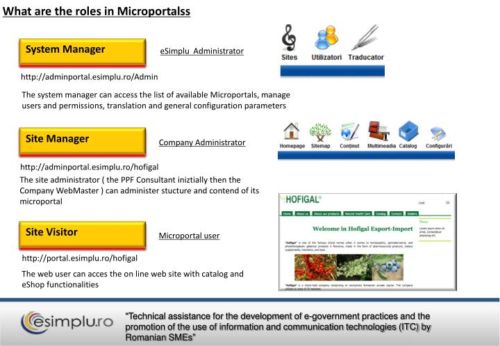 What are the roles in Microportalss