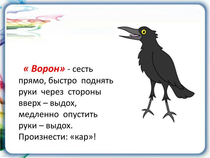 « Ворон»