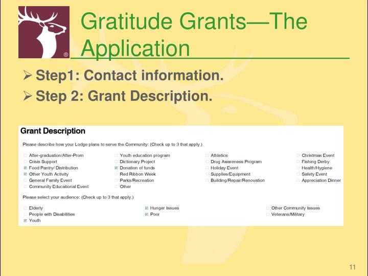 Gratitude Grants—The Application