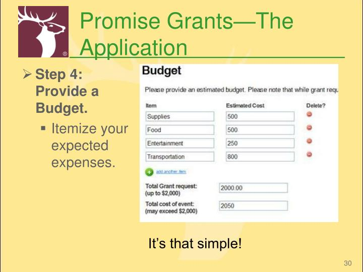 Promise Grants—The Application