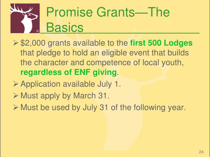 Promise Grants—The Basics