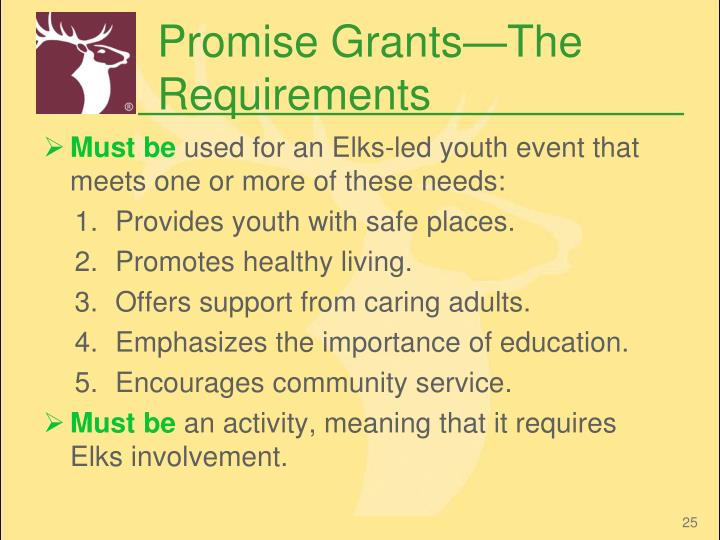 Promise Grants—The Requirements