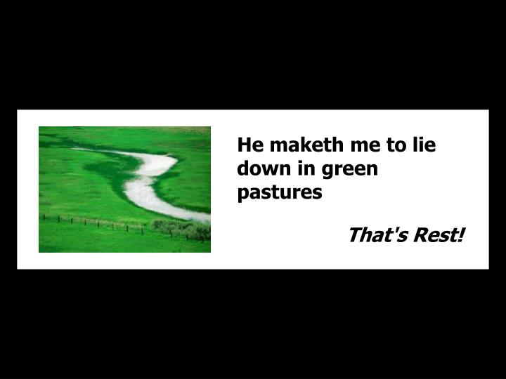 He maketh me to lie down in green pastures