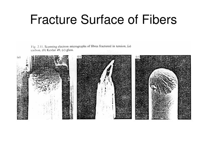 Fracture Surface of Fibers