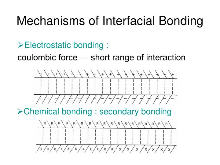 Mechanisms of Interfacial Bonding