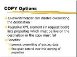 copy options