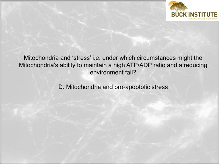 Mitochondria and 'stress' i.e. under which circumstances might the