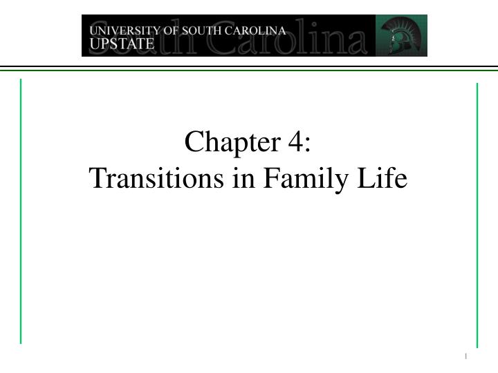 chapter 4 transitions in family life