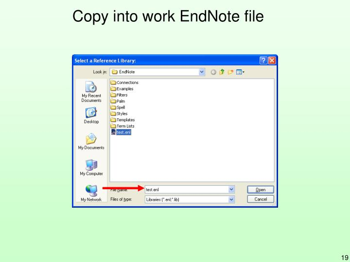 Copy into work EndNote file