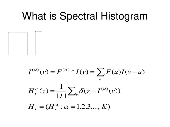What is Spectral Histogram