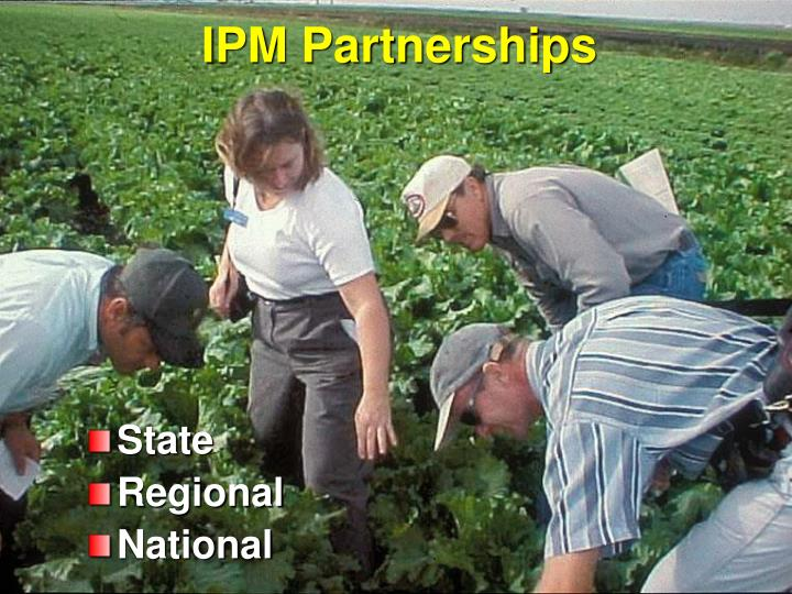 IPM Partnerships