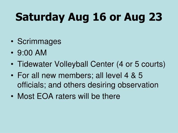 Saturday Aug 16 or Aug 23