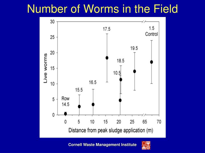 Number of Worms in the Field