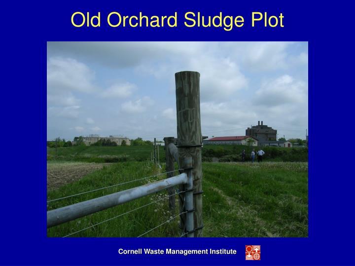 Old Orchard Sludge Plot