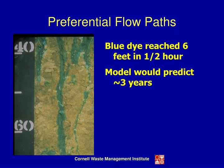 Preferential Flow Paths
