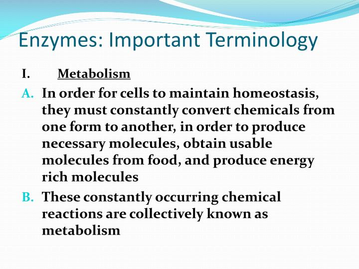 Enzymes important terminology