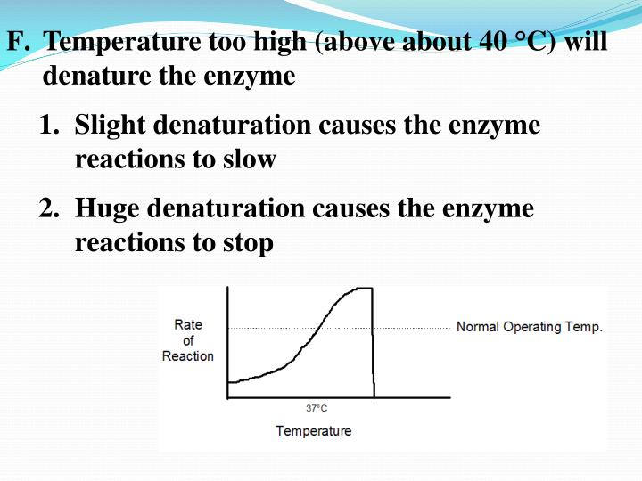 Temperature too high (above about 40 °C) will denature the enzyme