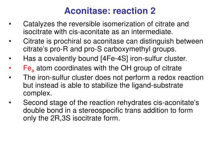 Aconitase: reaction 2