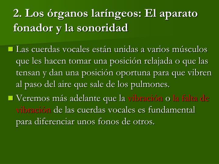 2. Los órganos laríngeos: El aparato fonador y la sonoridad