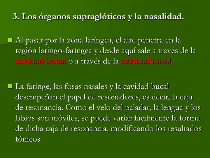 3. Los órganos supraglóticos y la nasalidad.