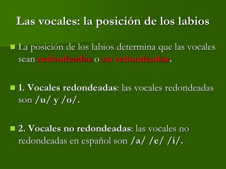 Las vocales: la posición de los labios