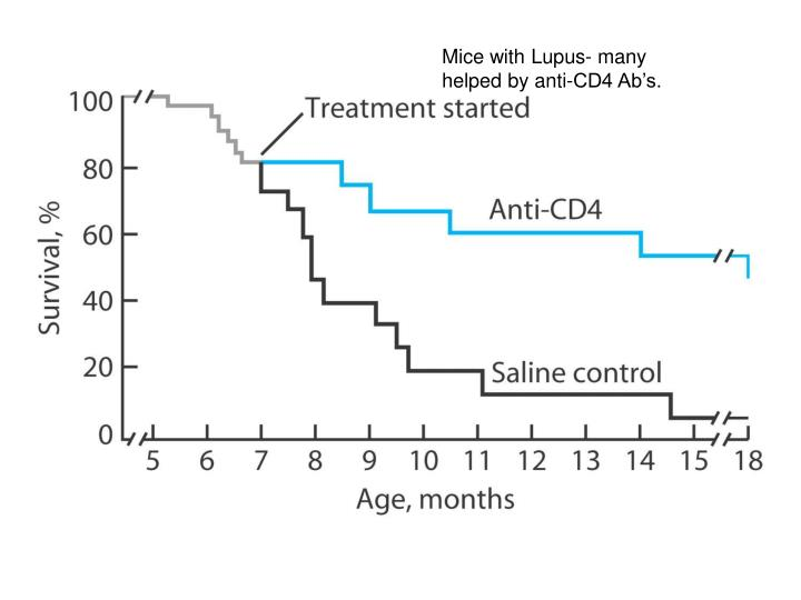 Mice with Lupus- many helped by anti-CD4 Ab's.