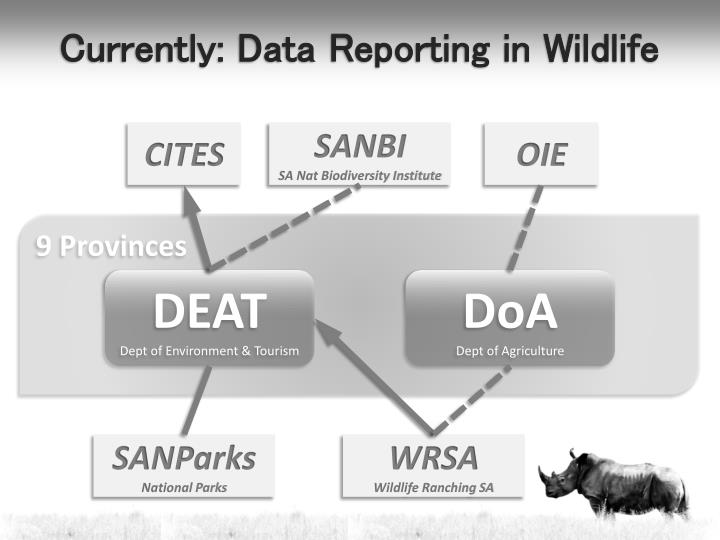 Currently: Data Reporting in Wildlife
