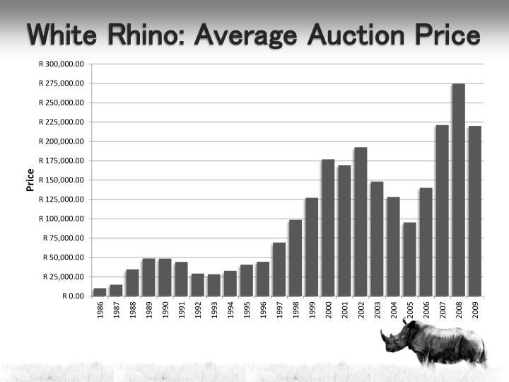 White Rhino: Average Auction Price