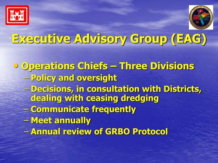 Executive Advisory Group (EAG)