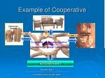 example of cooperative