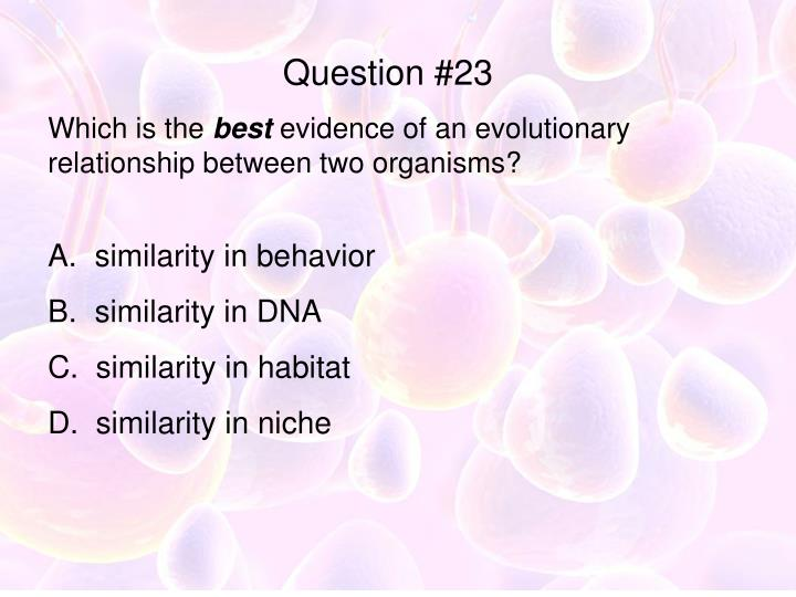 Question #23