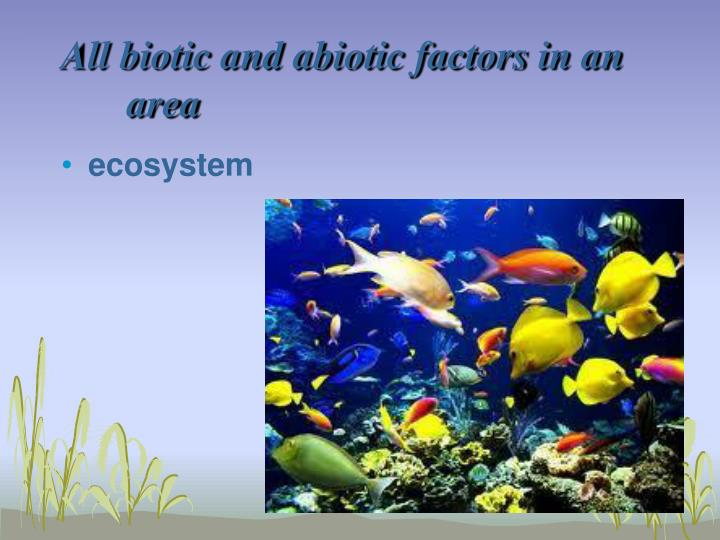 All biotic and abiotic factors in an area