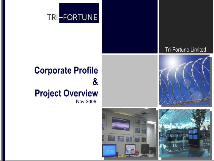 Corporate profile project overview