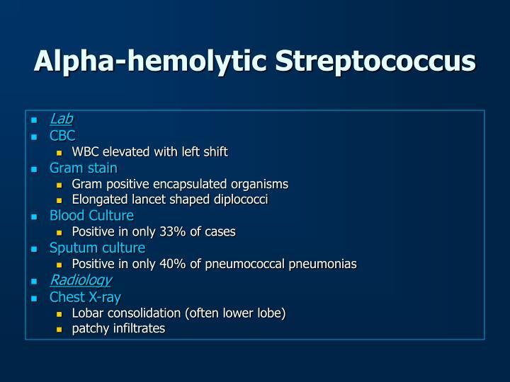Alpha-hemolytic Streptococcus