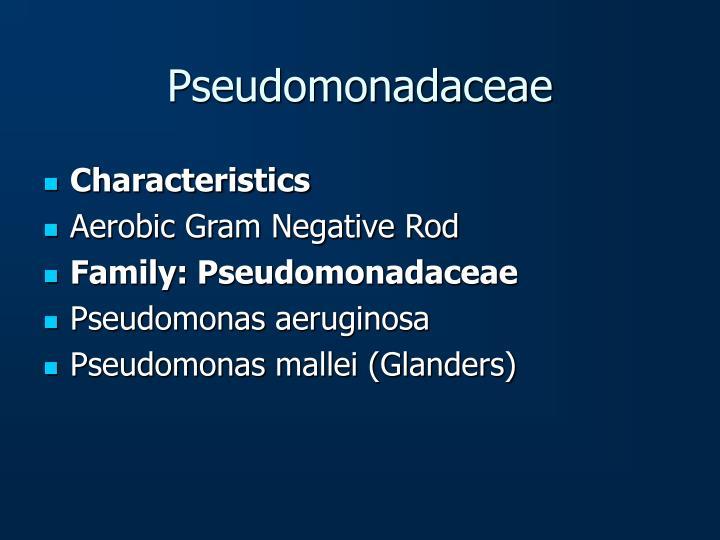 Pseudomonadaceae