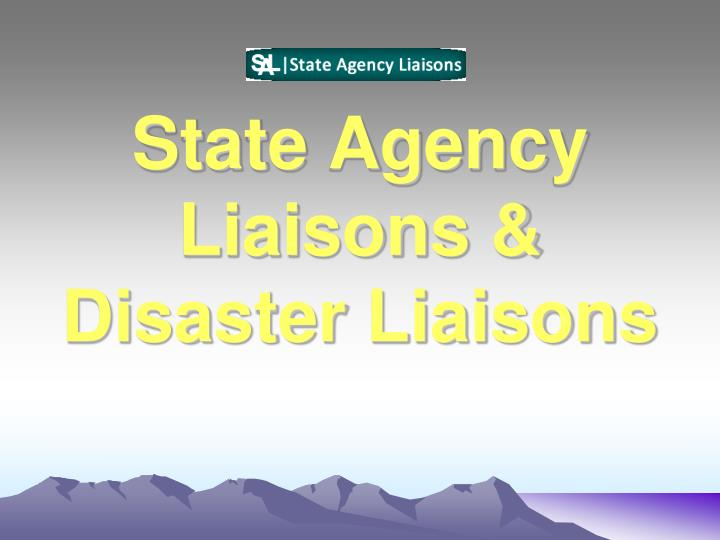 State Agency Liaisons &