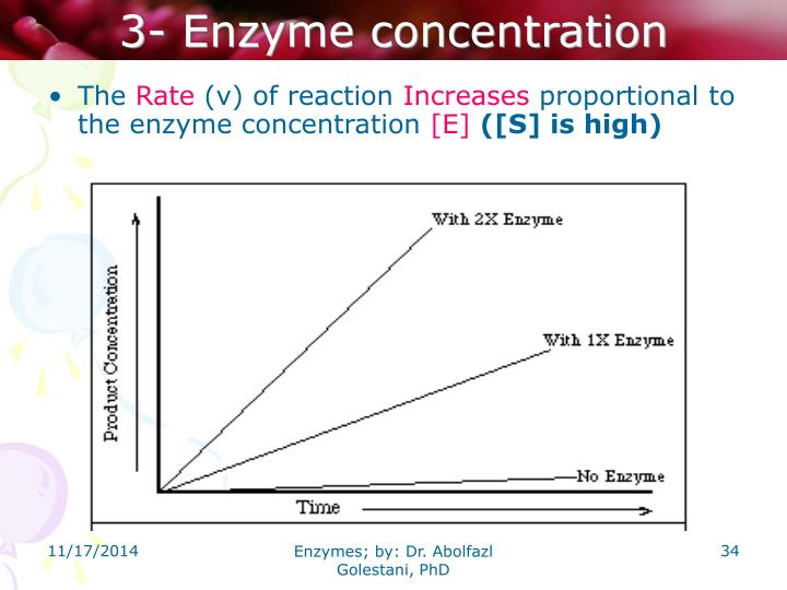 3- Enzyme concentration