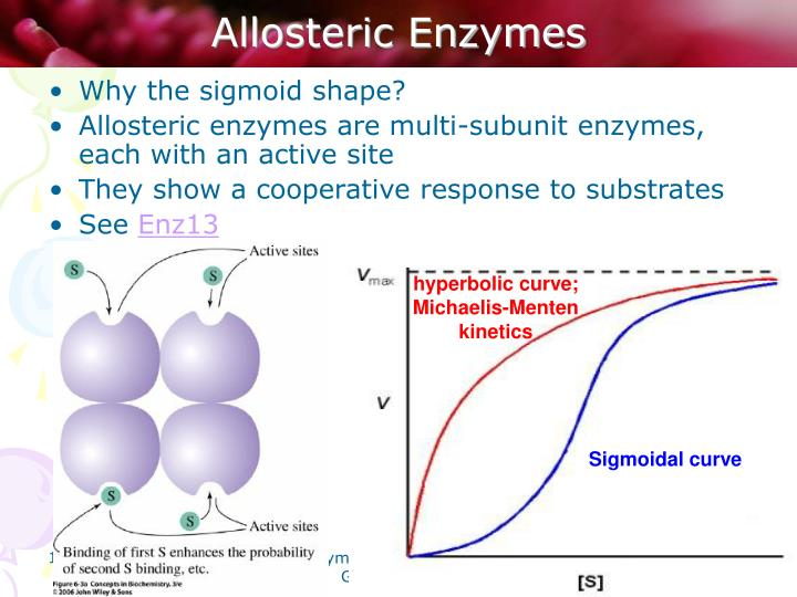 Allosteric Enzymes