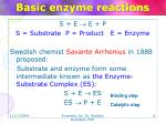 basic enzyme reactions