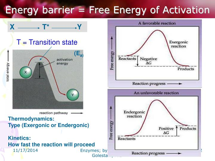 Energy barrier = Free Energy of Activation