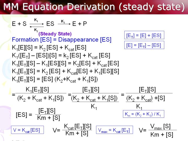 MM Equation Derivation (steady state)